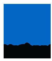 netapp-inc-200-logo